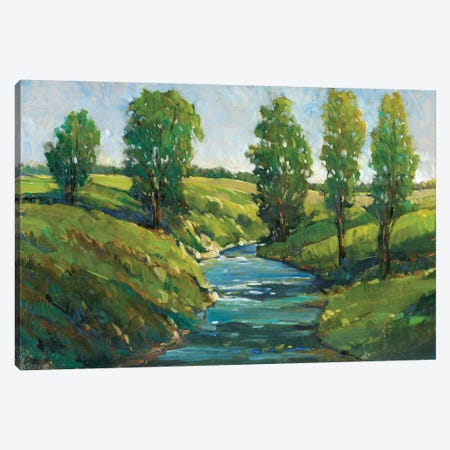 Lush Landscape III Canvas Print #TOT283} by Tim O'Toole Canvas Print