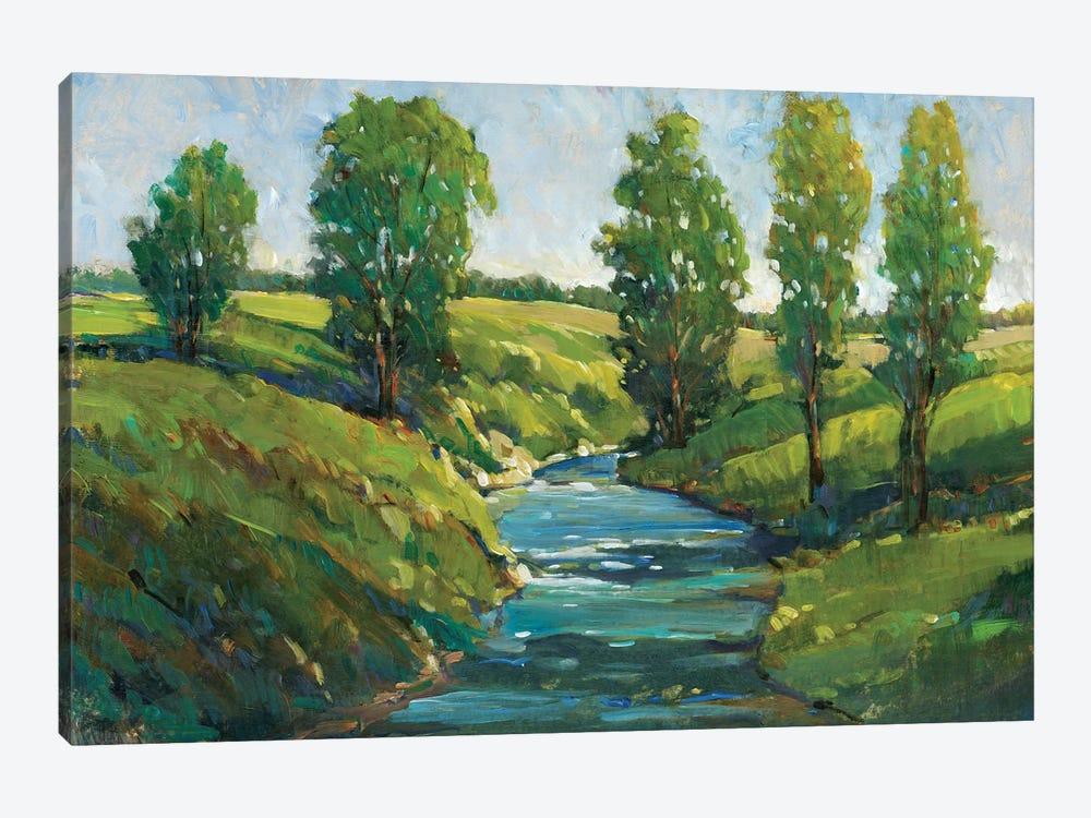 Lush Landscape III by Tim OToole 1-piece Canvas Art Print