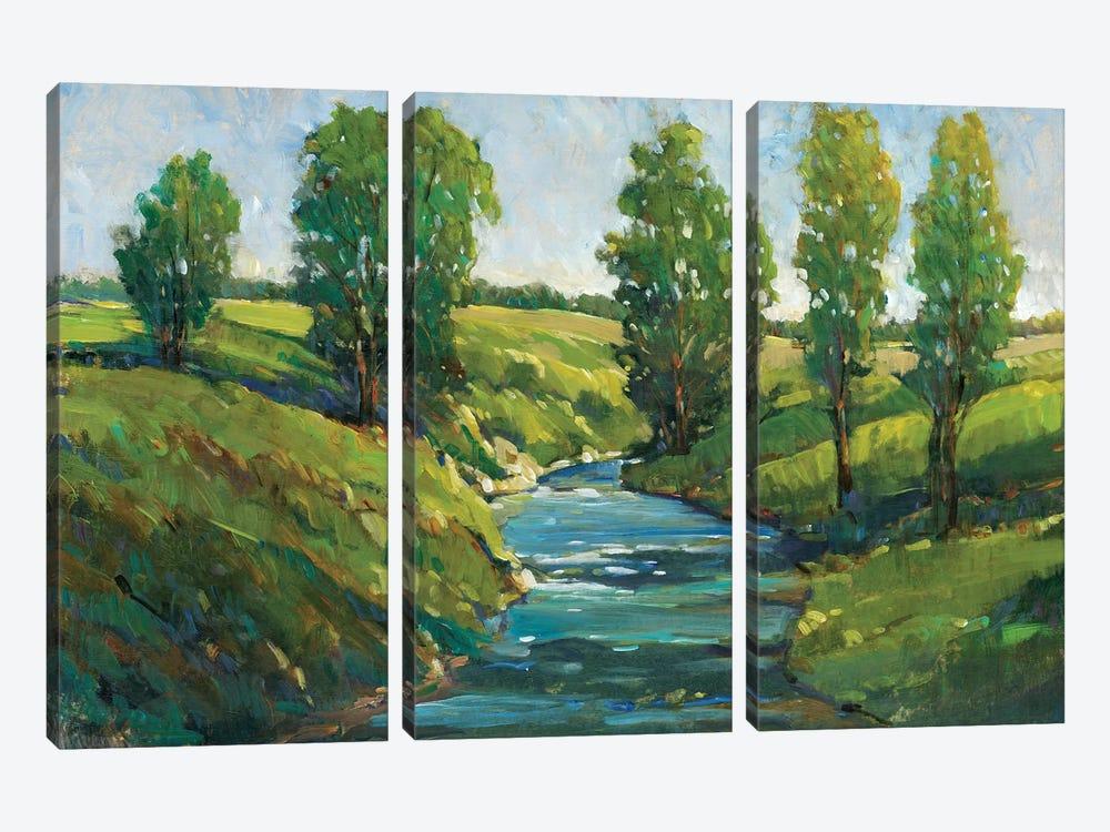 Lush Landscape III by Tim OToole 3-piece Canvas Art Print