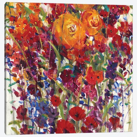 Mixed Bouquet III Canvas Print #TOT284} by Tim OToole Canvas Wall Art