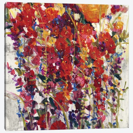 Mixed Bouquet IV Canvas Print #TOT285} by Tim OToole Canvas Art