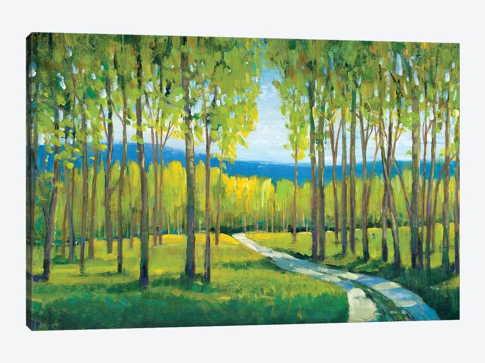 Morning Stroll I by Tim OToole 1-piece Canvas Artwork