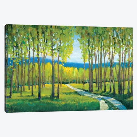 Morning Stroll I 3-Piece Canvas #TOT286} by Tim OToole Canvas Wall Art