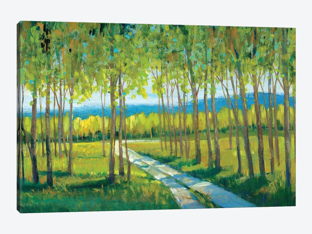 Morning Stroll II by Tim O'Toole 1-piece Art Print