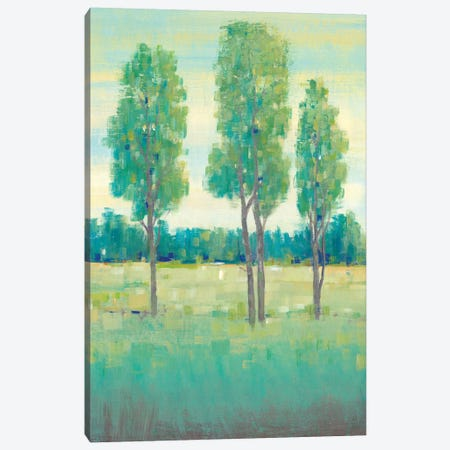 Spring Day I 3-Piece Canvas #TOT290} by Tim OToole Canvas Art