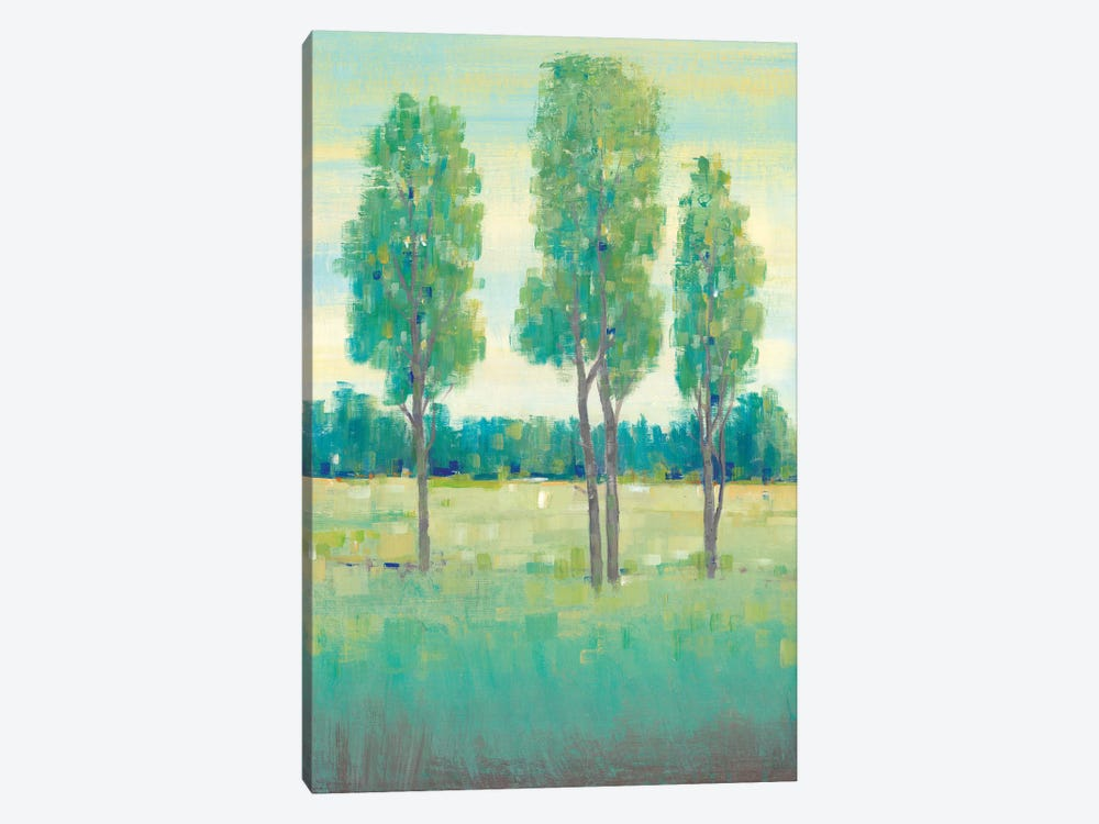 Spring Day I by Tim OToole 1-piece Canvas Art Print