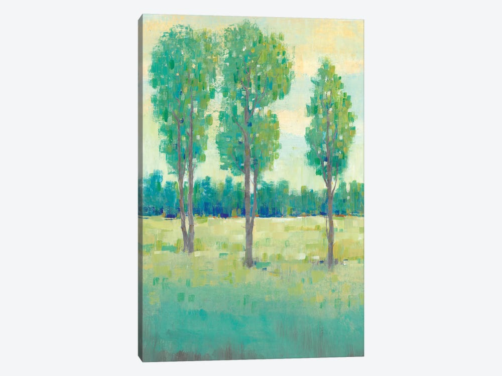 Spring Day II by Tim O'Toole 1-piece Canvas Artwork