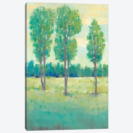 Spring Day II 3-Piece Canvas #TOT291} by Tim OToole Canvas Art
