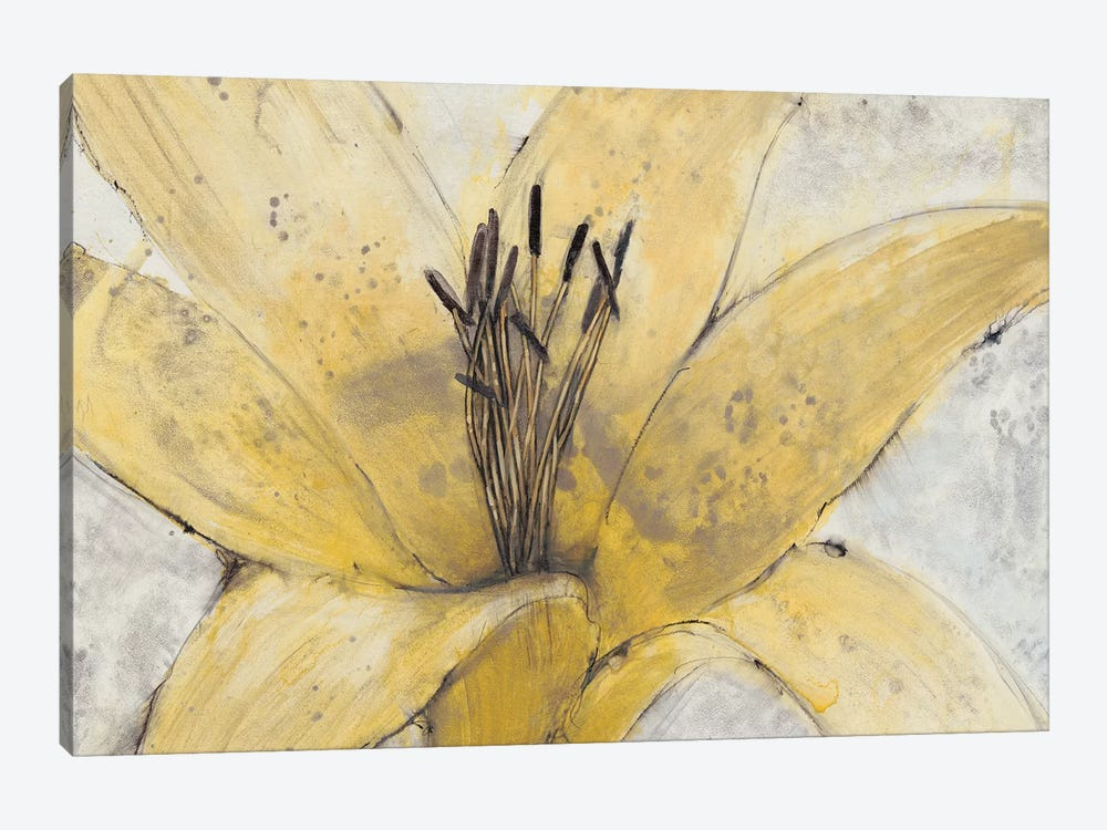 Transparency Flower I by Tim OToole 1-piece Canvas Art Print