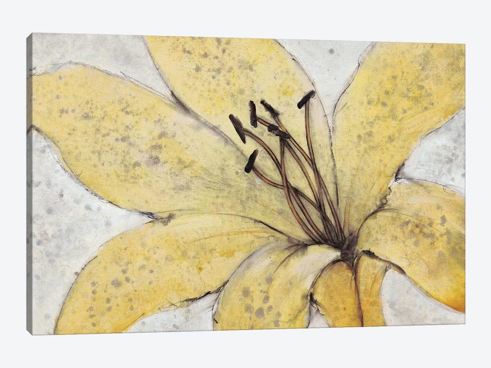 Transparency Flower II by Tim OToole 1-piece Canvas Artwork