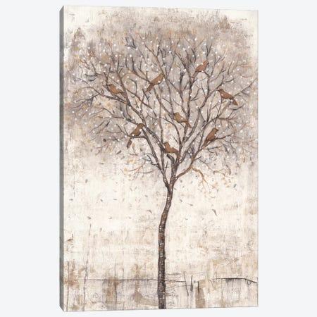 Tree Of Birds I Canvas Print #TOT296} by Tim OToole Canvas Art Print