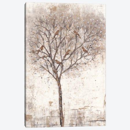 Tree Of Birds II 3-Piece Canvas #TOT297} by Tim OToole Art Print