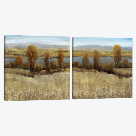 River Valley Diptych Canvas Print Set #TOT2HSET003} by Tim OToole Canvas Artwork