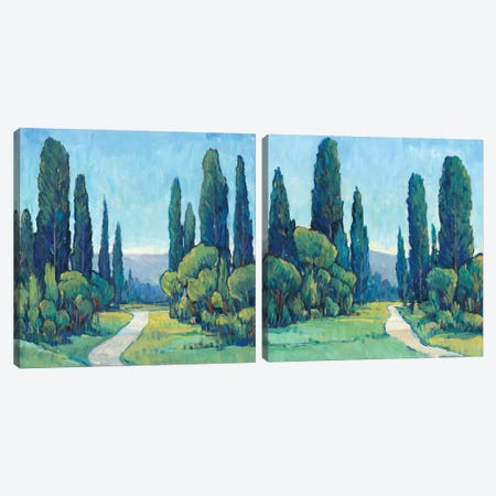 Cypress Path Diptych Canvas Print Set #TOT2HSET004} by Tim OToole Canvas Art Print