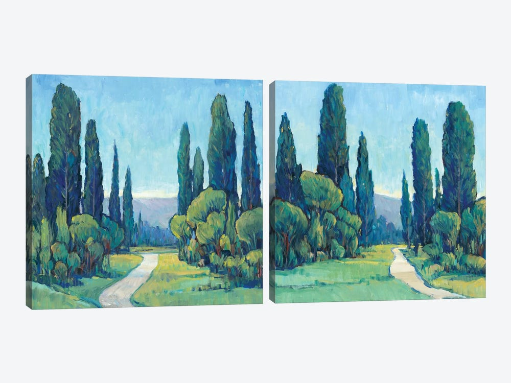 Cypress Path Diptych by Tim O'Toole 2-piece Canvas Artwork