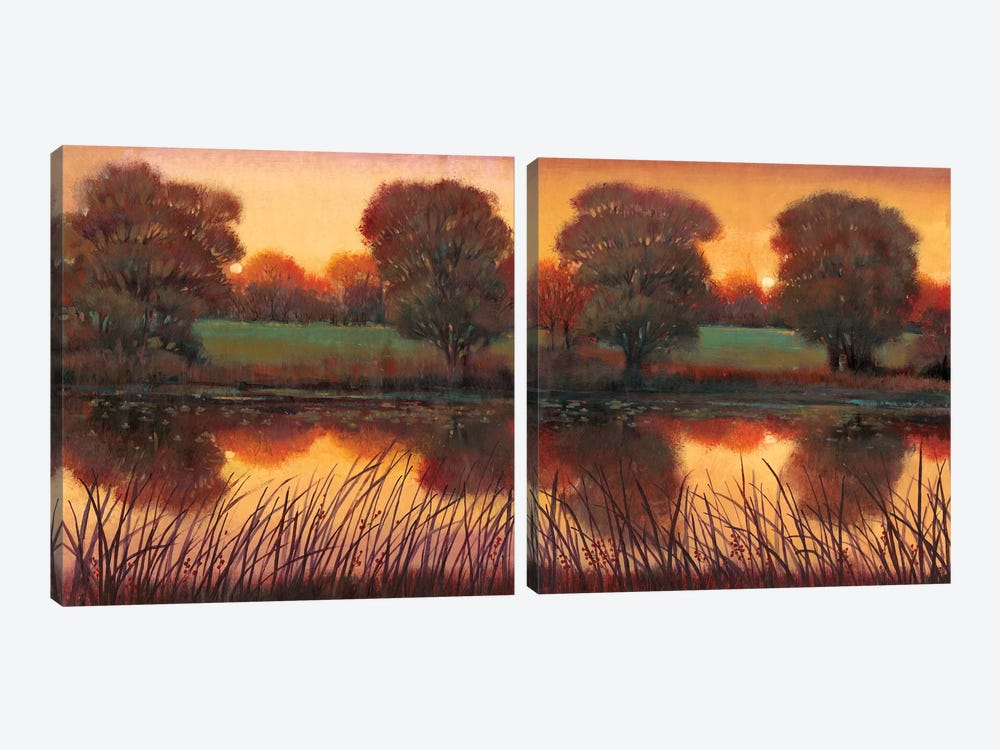 Early Evening Diptych by Tim O'Toole 2-piece Art Print