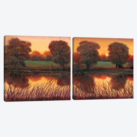 Early Evening Diptych Canvas Print Set #TOT2HSET005} by Tim OToole Canvas Art Print
