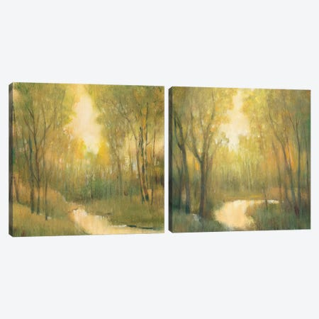Forest Sanctuary Diptych Canvas Print Set #TOT2HSET007} by Tim OToole Canvas Art Print