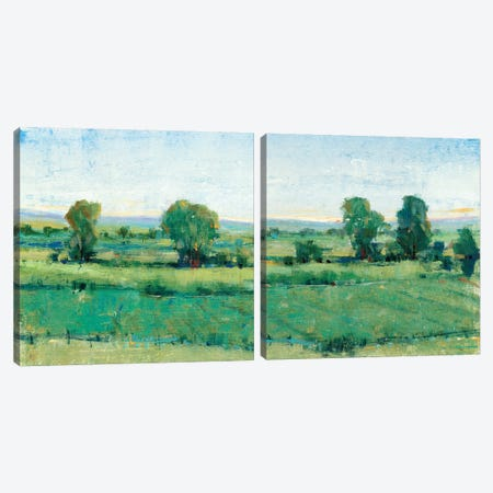 Spring Meadow Diptych Canvas Print Set #TOT2HSET010} by Tim O'Toole Art Print
