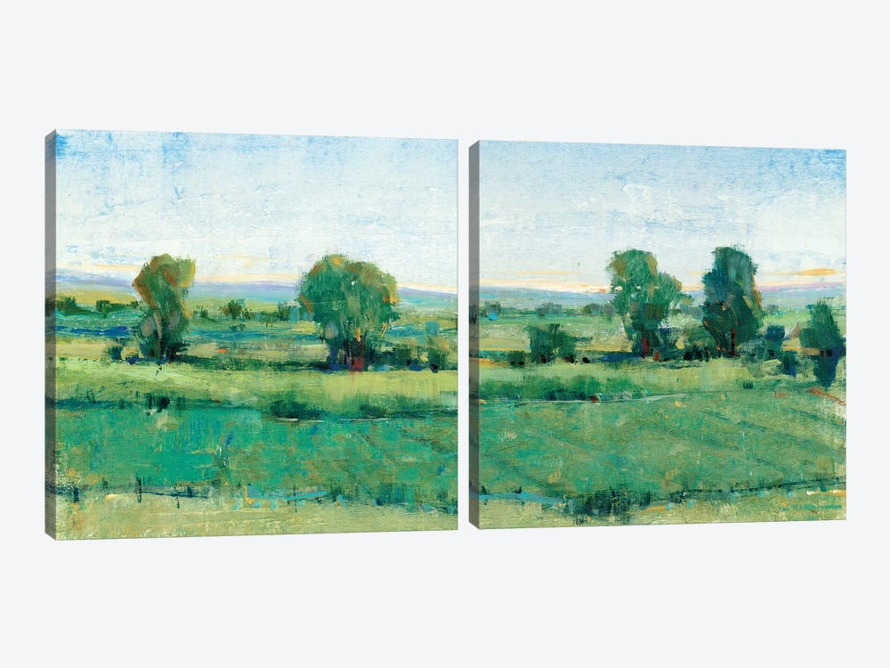 Spring Meadow Diptych by Tim OToole 2-piece Art Print