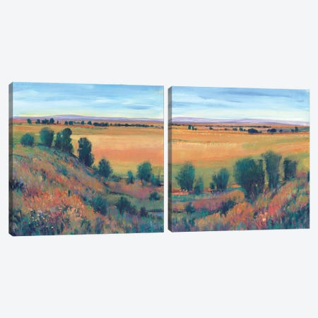 Hilltop View Diptych Canvas Print Set #TOT2HSET015} by Tim OToole Canvas Art