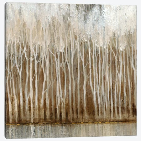 Whispering Trees II Canvas Print #TOT301} by Tim OToole Canvas Artwork
