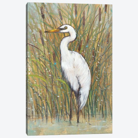 White Egret I Canvas Print #TOT302} by Tim OToole Canvas Art