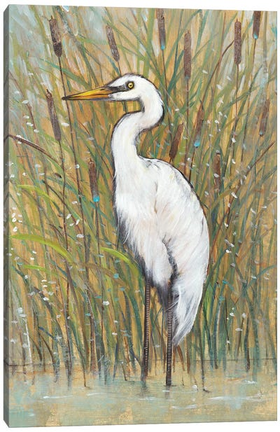 White Egret I Canvas Art Print