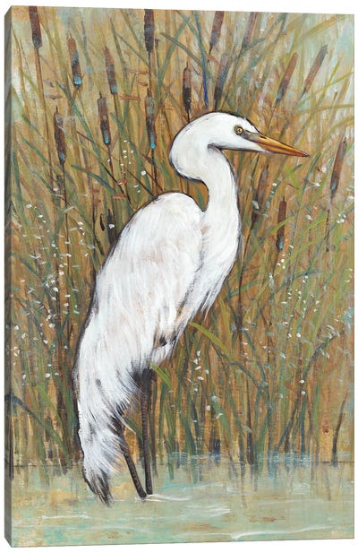 White Egret II Canvas Art Print