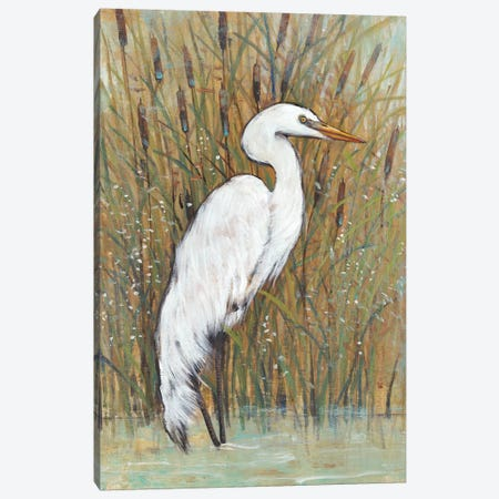 White Egret II Canvas Print #TOT303} by Tim OToole Canvas Wall Art