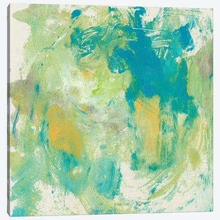 World Wind I Canvas Print #TOT304} by Tim OToole Art Print