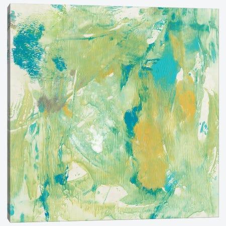 World Wind II Canvas Print #TOT305} by Tim OToole Canvas Art Print