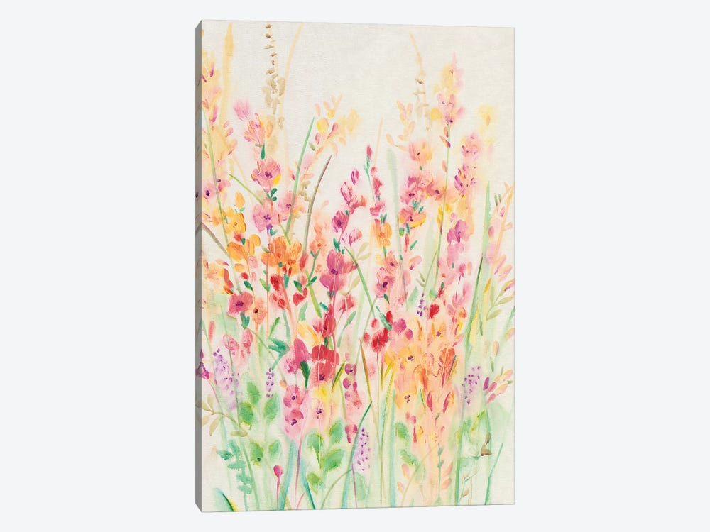 Brilliant Floral I by Tim OToole 1-piece Canvas Wall Art