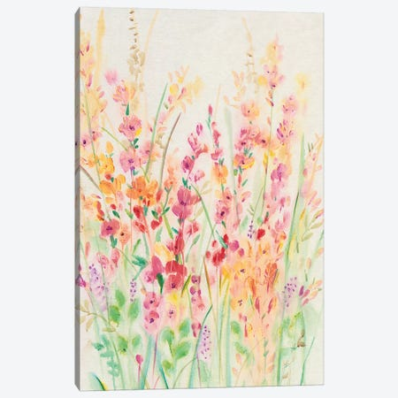 Brilliant Floral I 3-Piece Canvas #TOT314} by Tim OToole Canvas Wall Art