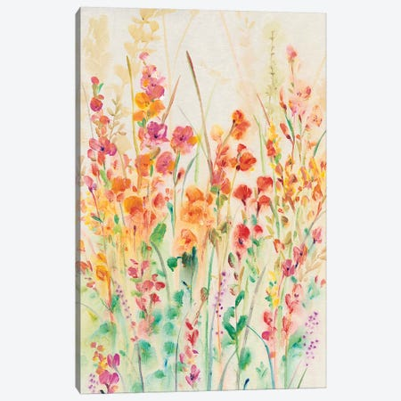 Brilliant Floral II Canvas Print #TOT315} by Tim OToole Canvas Artwork