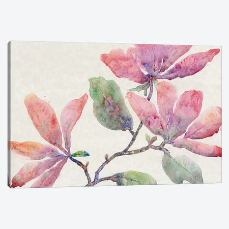 Flowering Branch I 3-Piece Canvas #TOT320} by Tim OToole Canvas Artwork