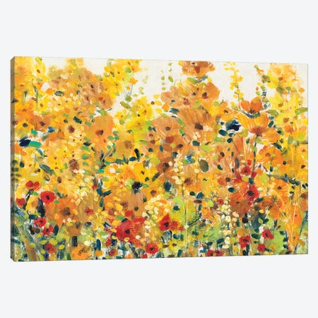 Golden Summer Garden I 3-Piece Canvas #TOT324} by Tim OToole Canvas Print
