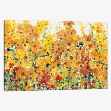 Golden Summer Garden I Canvas Print #TOT324} by Tim OToole Canvas Print