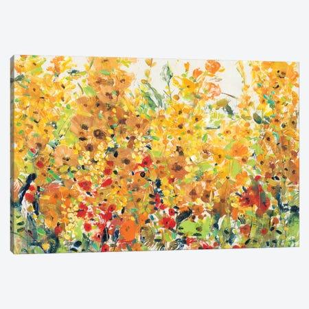 Golden Summer Garden II Canvas Print #TOT325} by Tim OToole Canvas Print