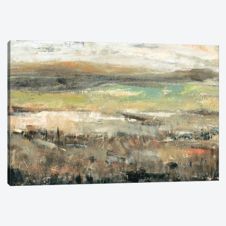 Grassland Showers I Canvas Print #TOT326} by Tim OToole Canvas Print