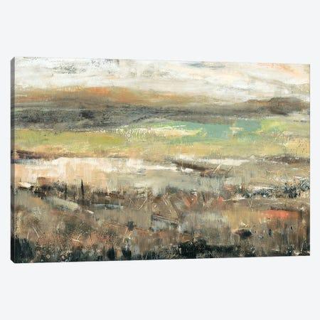 Grassland Showers I Canvas Print #TOT326} by Tim OToole Canvas Print