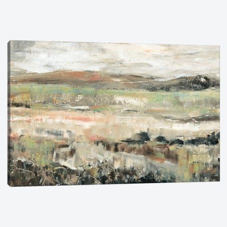 Grassland Showers II Canvas Print #TOT327} by Tim OToole Canvas Print