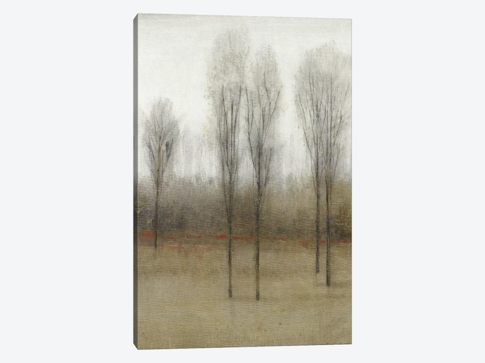 Last Day Of Fall I by Tim O'Toole 1-piece Canvas Artwork