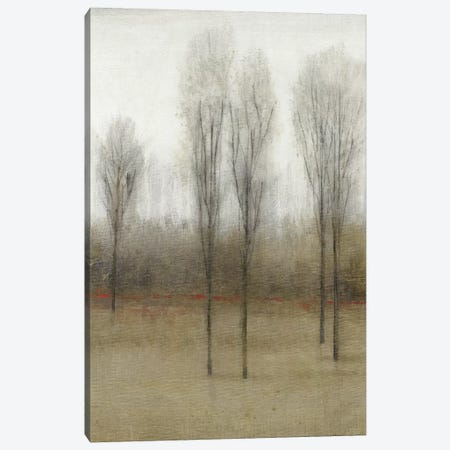 Last Day Of Fall I Canvas Print #TOT330} by Tim OToole Canvas Art Print