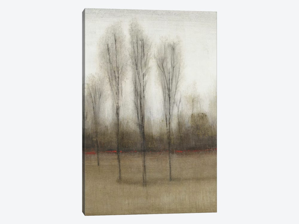 Last Day Of Fall II by Tim O'Toole 1-piece Canvas Print