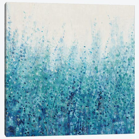 Misty Blues I Canvas Print #TOT334} by Tim OToole Canvas Wall Art