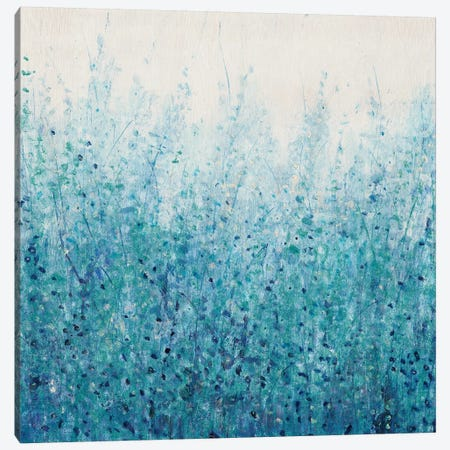 Misty Blues II Canvas Print #TOT335} by Tim OToole Canvas Wall Art