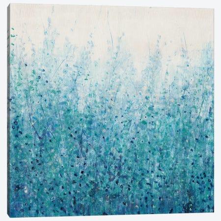 Misty Blues II Canvas Print #TOT335} by Tim OToole Canvas Wall Art