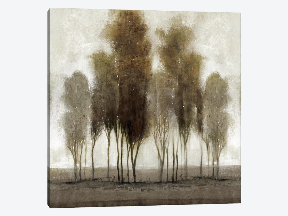 Neutral Scape by Tim O'Toole 1-piece Canvas Art