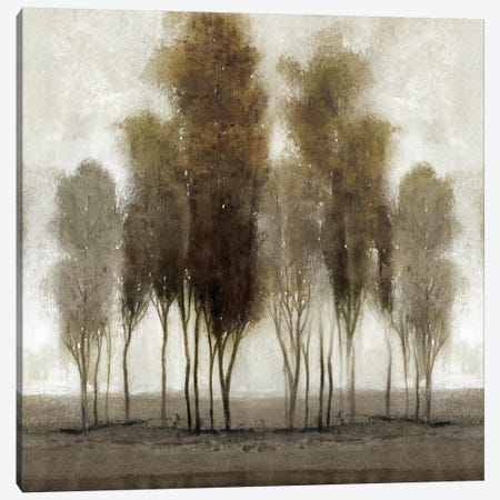Neutral Scape Canvas Print #TOT338} by Tim OToole Canvas Art Print